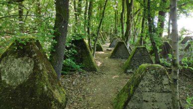 Reste des Westwalls am Orscholz-Riegel
