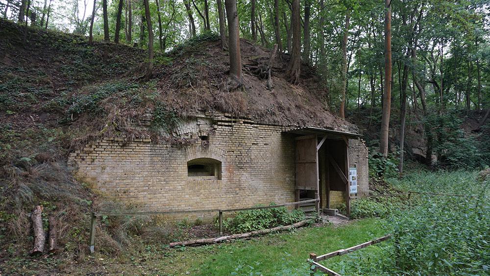 Fort Hahneberg
