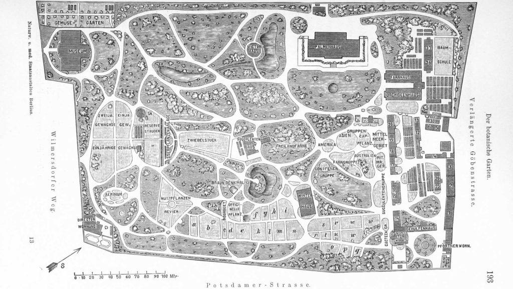 Die Karte zeigt den Botanischen Garten im Jahr 1886. Nur Museumsgebäude blieb erhalten.